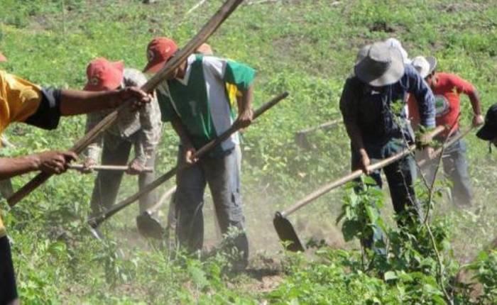¿No que primero los pobres? Morena eliminó casi en su totalidad el presupuesto para el desarrollo rural