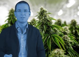 marihuana Morena Anaya