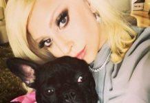 Lady Gaga ofrece recompensa