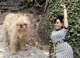 Secreto de Maribel Guardia
