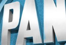 grilla PAN dirigencia,El PAN podría perder su registro como partido político
